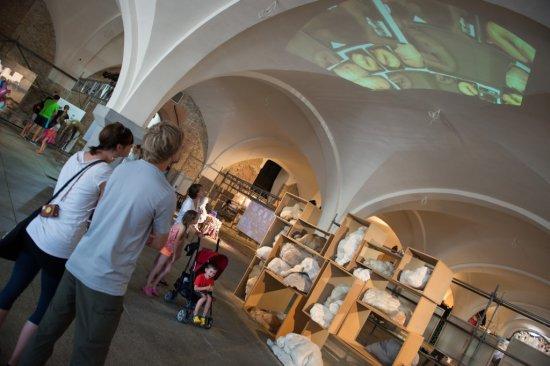 Najlepsze dyplomy Akademii Sztuk Pięknych 2015 - wystawa gdańskiej Zbrojowni Sztuki.