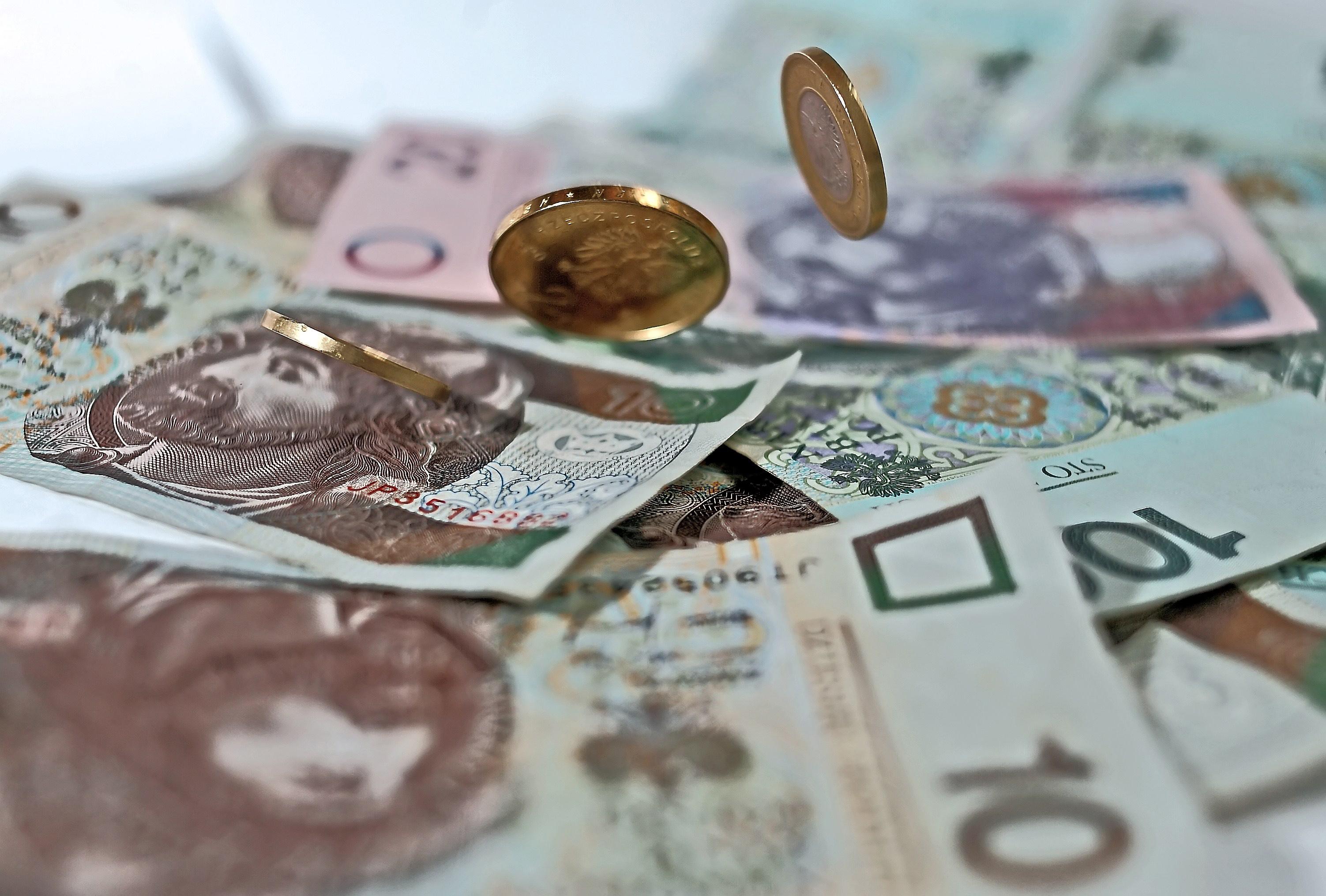 Pieniądze. fot. Danuta Matloch