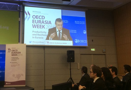 Na zdjęciu: Minister Piotr Gliński na Spotkaniu Wysokiego Szczebla OECD Eurasia Week w Paryżu
