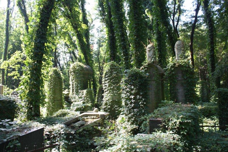 Cmentarz Żydowski przy Okopowej w Warszawie. zdjęcie z archiwum Fundacji Dziedzictwa Kulturowego