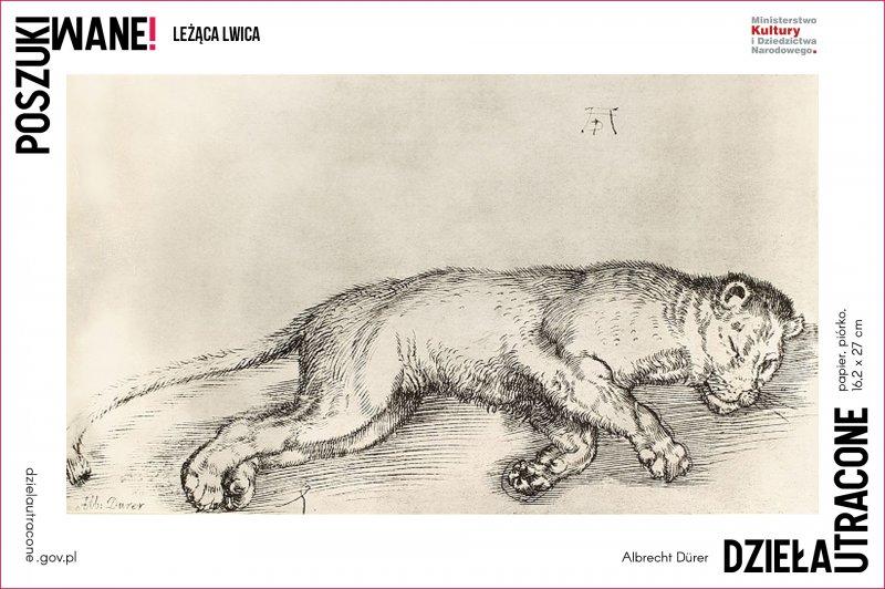 Leżąca lwica,  Albrecht Dürerpapier,  piórko,  16,2 x 27 cm